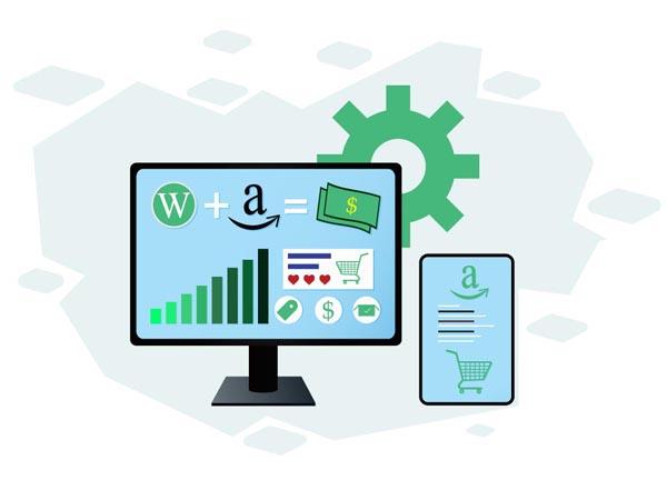 Amazon Affiliate Niche Website Building Service